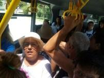 Minibüs Değil, Sanki Otobüs