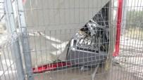 BAZ İSTASYONU - PKK Üyeleri Baz İstasyonuna Saldırdı