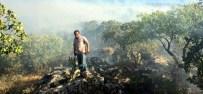 YARDIM TALEBİ - Fıstık Bahçelerinde Çıkan Yangın Milletvekilinin Girişimi İle Büyümeden Söndürüldü