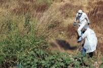 Manisa'da Yol Kenarında Ceset Bulundu