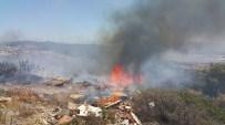 Milas'ta Makilik Alan Alev Alev Yanıyor