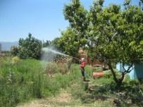 Turgutlu'da İlaçlama Çalışmaları Aralıksız Sürüyor