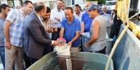 Afyonkarahisar'daki Göl Ve Göletlere 130 Bin Adet Balık Bırakıldı