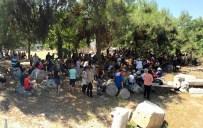 HONDURAS - Akhisar'da Bir Günde 17 Ülkeden 285 Turist Geldi