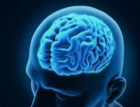 ŞIZOFRENI - Beynin değişime uğrayan bölgerleri belirlendi