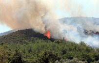 YANGIN HELİKOPTERİ - Bodrum'da Korkutan Yangın