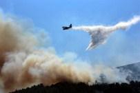 YANGIN HELİKOPTERİ - Bodrum'da Yüzlerce Çam Ağacı Kül Oldu