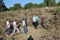 MAHMUT YıLMAZ - Mersin'de 152 Hektar Alanda Endüstriyel Ağaçlandırma Çalışmaları Yapılıyor