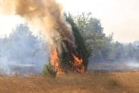 FAILI MEÇHUL - Uzunköprü'deki Orman Yangını