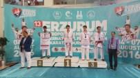 KAĞıTSPOR - Büyükşehirli Karateciler, Milli Takımı Zirveye Çıkardı