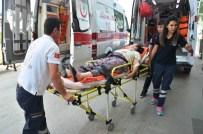 Fındık Toplarken Düşen İşçi Yaralandı