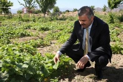 Organik Bahçe'nin Temeli Atılıyor