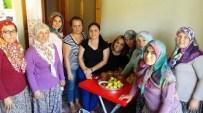 Yenipazarlı Kadınlar Taze İncir Reçeli Yapmayı Öğrendi