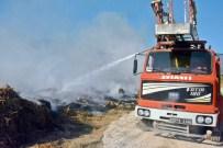 BEYMELEK - Antalya'da Sazlık Alanda Yangın Çıktı