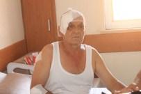 YALIN - Saldırıda Yaralanan Vatandaşlar İHA'ya Konuştu