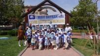 RESİM YARIŞMASI - Büyükşehir, Çocuklara Özel Etkinlikler Düzenledi