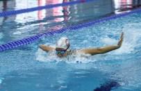 YÜZME YARIŞI - Engelli Yüzücüden Büyük Başarı Açıklaması 4 Yılda 24 Madalya, 2 Kupa