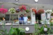 SARMAŞıK - En Güzel Çiçekli Balkonlar Seçildi