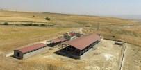 KÖY YOLLARI - Büyükşehir Hınıs'ta Tüm Hızıyla Çalışmalarını Sürdürüyor