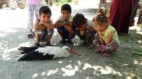 TAŞPıNAR - Kanadı Kırık Leyleğe Çocuklar Sahip Çıktı