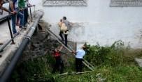 SOKAK KÖPEĞİ - Niksar'da Dereye Düşen Köpek Kurtarıldı