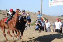 Taşköprü'de '15 Temmuz Demokrasi Şehitleri' Anısına At Yarışları Düzenlenecek