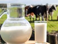 SÜT ÜRETİMİ - Süt üretimi yıllık bazda yüzde 3,5 arttı