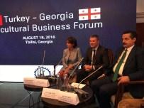 GÜRCİSTAN BAŞBAKANI - Bakan Çelik'ten Gürcistan'a 15 Temmuz Teşekkürü