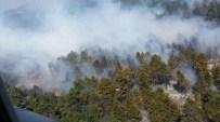 ORMAN İŞÇİSİ - Çanakkale'de Orman Yangını