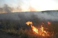 ORMAN YANGıNLARı - Anız Yangınlarına Karşı Uyarı