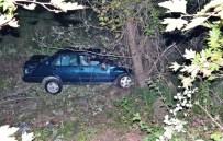 KOZCAĞıZ - Otomobil Şarampole Yuvarlandı Açıklaması 2 Yaralı