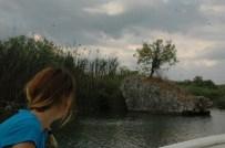 GÖKOVA - Tarihi Köprünün Bekçi Menengiç Ağacı