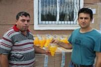GÜNEY DOĞU - Üreticiye Akdeniz Meyve Sineği Tuzağı Dağıtılıyor