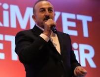 FRANKFURTER ALLGEMEINE ZEITUNG - Çavuşoğlu'ndan Avusturyalı bakana muhteşem ayar