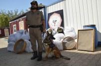 DİYARBAKIR EMNİYET MÜDÜRLÜĞÜ - Diyarbakır'da Uyuşturucuya 2 Ayda 181 Operasyon