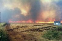 HAVA KIRLILIĞI - Anız Yangınlarına Kalıcı Çözüm Önerisi