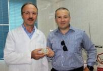Hayvancılıkta 'Çip' Dünyada İlk Kez Türkiye'de