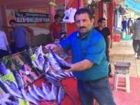 BALIK SEZONU - Balıkcılar Yeni Sezonu Umutla Bekliyor