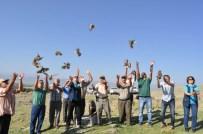 Seydişehir'de 400 Adet Keklik Doğaya Bırakıldı