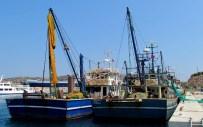 BALIK SEZONU - Balıkçılar, Liman Sorunları Çözülsün İstiyor