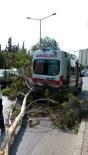 ÖMER SABANCı - Şiddet Gören Kadını Taşıyan Ambulansın Üzerine Ağaç Devrildi