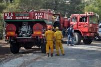 DİKKATSİZLİK - Osmaniye'de 10 Hektarlık Kızılçam Ormanı Yandı