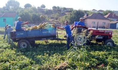 'Vodafone Akıllı Köy' İlk Mahsulünü Verdi