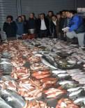 BALIK EKMEK - Balıkçılar Güzelbahçe'de Buluşacak