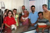 AMELİYAT MASASI - İngiltere'den Sokak Hayvanları İçin Didim'e Anlamlı Bağış