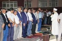 AHMET KARATEPE - 'Seccadeni Al Gel' Programı Düzenlendi