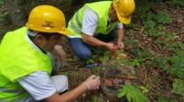ORMAN İŞLETME MÜDÜRÜ - 'Avcı Böcekler' İşbaşında