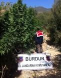 YÜREĞIL - Burdur'da Uyuşturucu Operasyonu