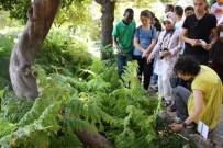 Geleceğin Bitki Uzmanları Bu Bahçede Yetişiyor