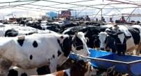 SEYİT ONBAŞI - Selçuklu'da Kurban Satış Ve Kesim Yerleri Belli Oldu